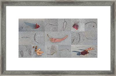 Leaves And Cracks Collage Framed Print by Ben and Raisa Gertsberg