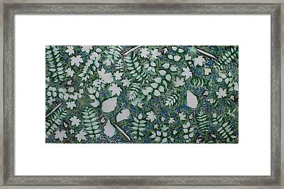 Leaves And Knives Framed Print by Biagio Civale