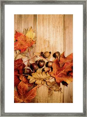 Framed Print featuring the photograph Leaves And Nuts 2 by Rebecca Cozart