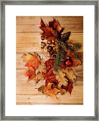 Framed Print featuring the photograph Leaves And Nuts And Red Ornament by Rebecca Cozart