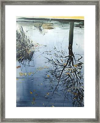 Leaves And Reeds On Tree Reflection Framed Print by Calum McClure