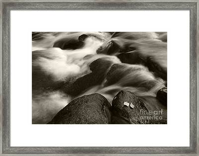 Leaves And Waterfall Framed Print by Timothy Johnson