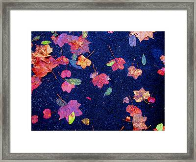 Leaves Framed Print by Christopher Woods