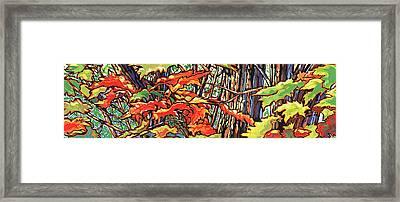 Leaves Long Framed Print by Nadi Spencer