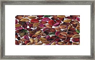 Leaves Framed Print by Mirfarhad Moghimi