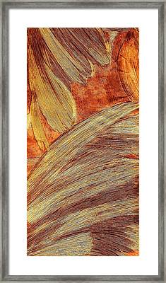 Leaves Of Brushstrokes Framed Print by Anne-elizabeth Whiteway