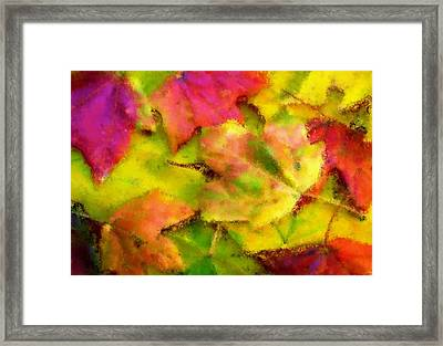 Leaves Of Fall Framed Print by Harry Dusenberg