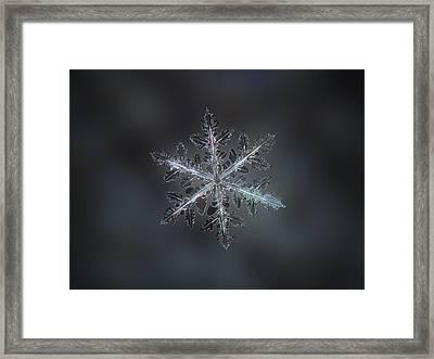 Leaves Of Ice II Framed Print