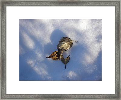 Leaves On Snow Framed Print