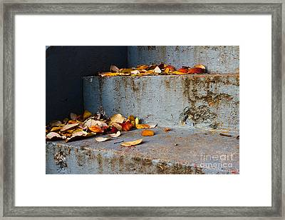 Leaves On The Stairs Framed Print