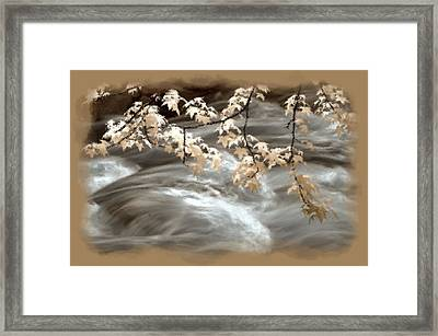 Leaves Over Gossamer Waters Framed Print