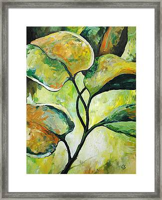Leaves2 Framed Print by Chris Steinken