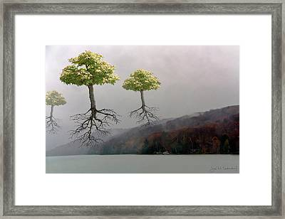 Leaving Home Framed Print by Joan Ladendorf