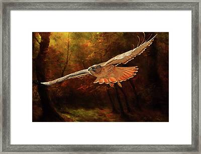 Leaving The Enchanting Forest Framed Print by Donna Kennedy
