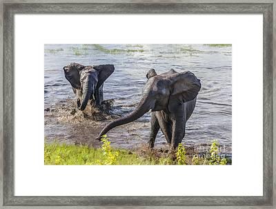 Leaving The River Framed Print