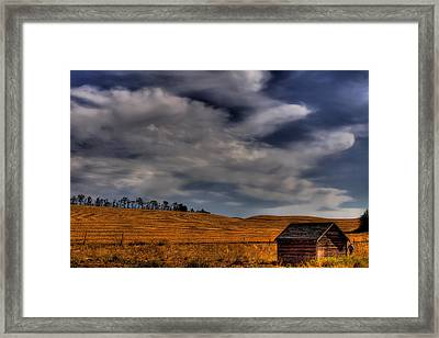 Leaving The Shed Framed Print by David Patterson