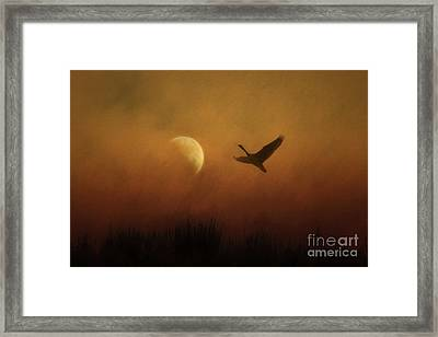 Leaving The World Behind Framed Print