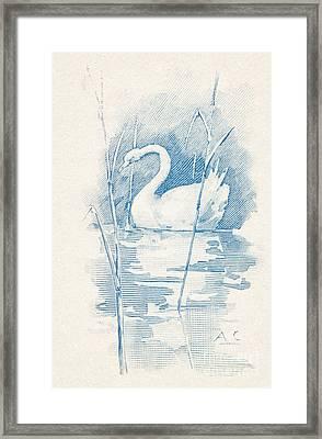 Leda  Framed Print