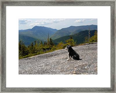 Ledge Sitting Framed Print