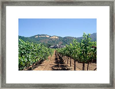 Ledson Winery And Vineyard Sonoma County California Framed Print by George Oze