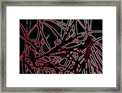 Lee Krasner Spider Plant Digital Detail 2 Framed Print by Dick Sauer