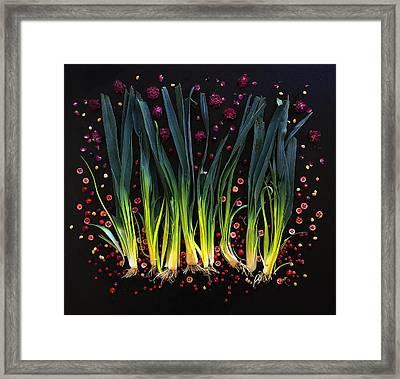 Leeks Framed Print