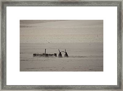 Left Abandonded Framed Print by Kandie  Kingery