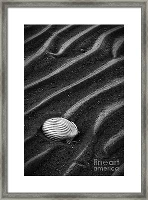 Left Behind Framed Print by Carrie Cranwill