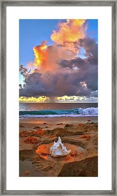 Left Behind - From Singer Island Florida. Framed Print