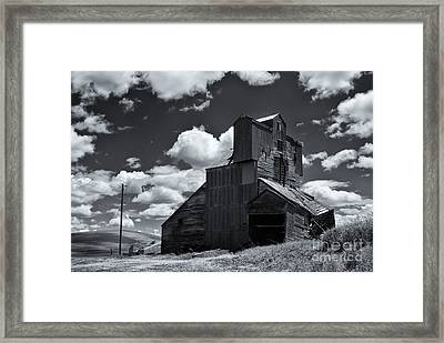 Left To The Elements Framed Print