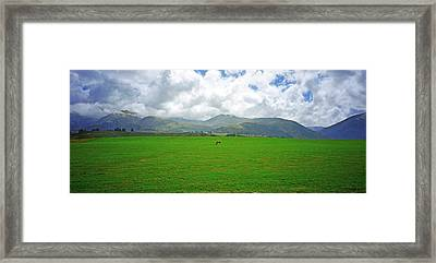 Leg Room  Framed Print by Kevin Smith