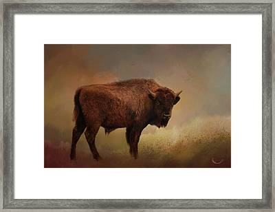 Legend Of Buffalo Spirit Framed Print by Theresa Campbell