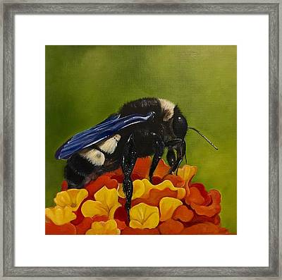 Legs Adorned With Pollen Framed Print