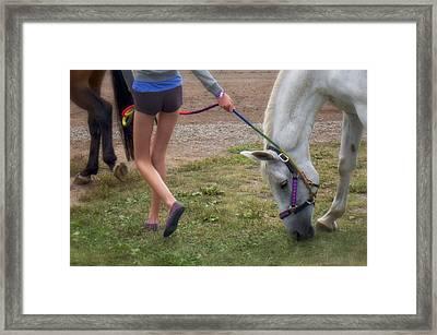 Legs Framed Print by Mary Lee Dereske