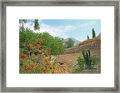 Lehua Near Finestrat Framed Print by Nieves Nitta