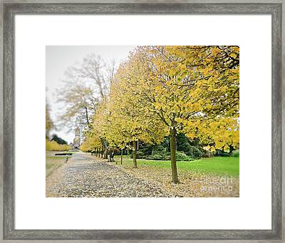 Framed Print featuring the photograph Leipzig Memorial Park In Autumn by Ivy Ho