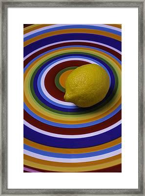 Lemmon On Circle Plate Framed Print