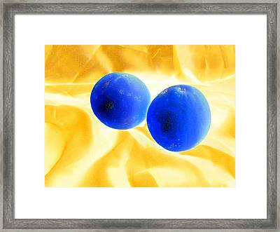 Lemon Blue Framed Print by Florene Welebny