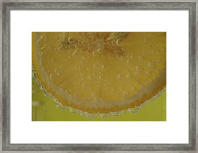 Lemon Bubbles Framed Print