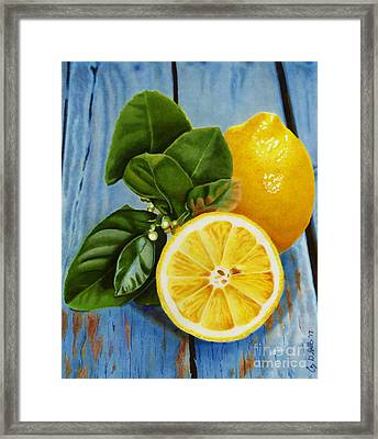 Lemon Fresh Framed Print
