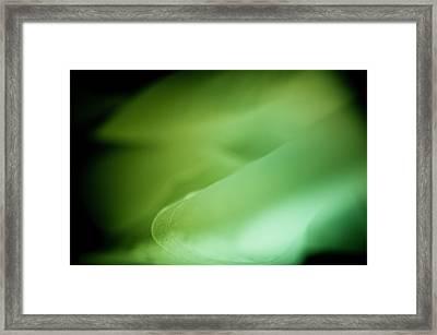 Framed Print featuring the photograph Lemon Lime Swirl by Christi Kraft