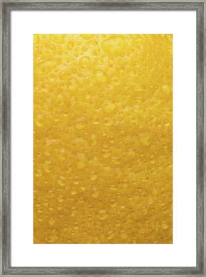 Lemon Skin Framed Print by Steve Gadomski