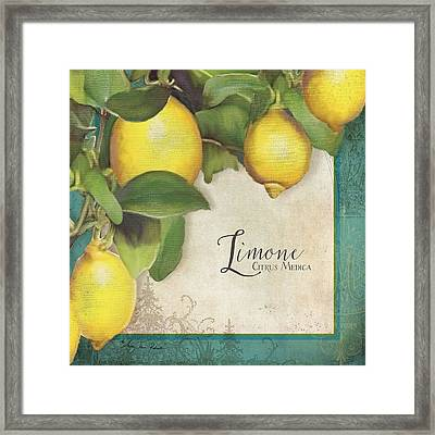 Lemon Tree - Limone Citrus Medica Framed Print by Audrey Jeanne Roberts
