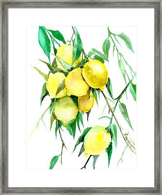 Lemon Tree Framed Print by Suren Nersisyan