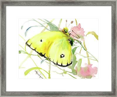 Lemon Yellow Butterfly Framed Print by Suren Nersisyan