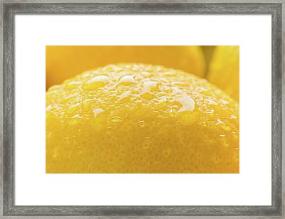 Lemon Zest Number 2 Framed Print by Steve Gadomski