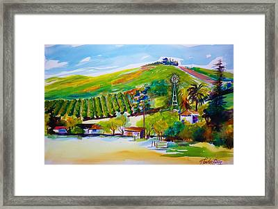 Lemons 400 From Sharons View Framed Print by Therese Fowler-Bailey