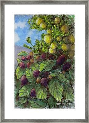 Lemons And Berries Framed Print by Laurie Morgan