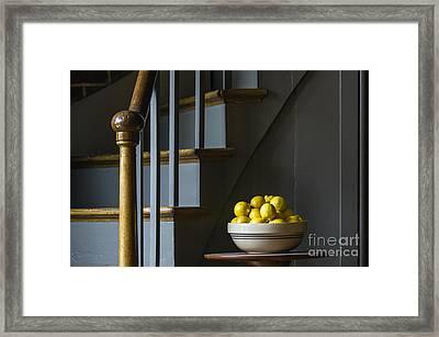 Lemons - D009753 Framed Print by Daniel Dempster