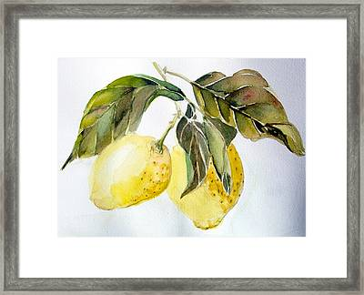 Lemons Framed Print by Mindy Newman